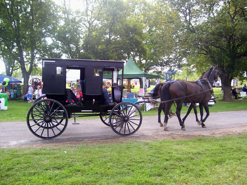 Pathfinders - Black Buggy Day Festival